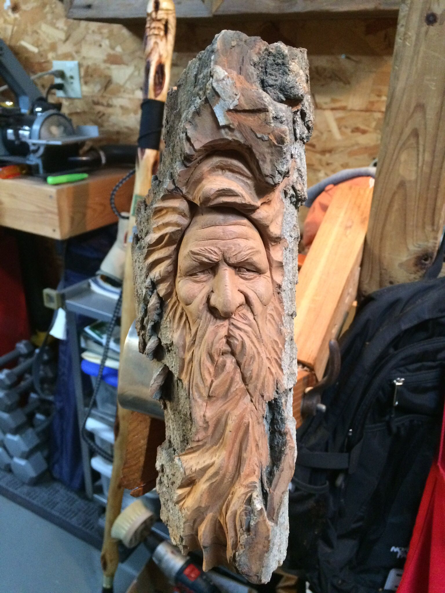 Cottonwood carving by connell carving tree