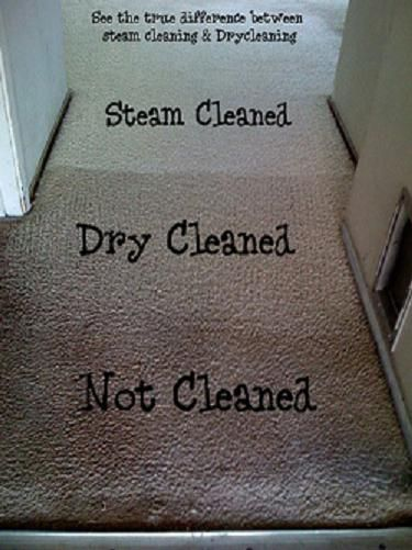 clipart carpet cleaning - Google Search | CARPET TECH | Pinterest ...