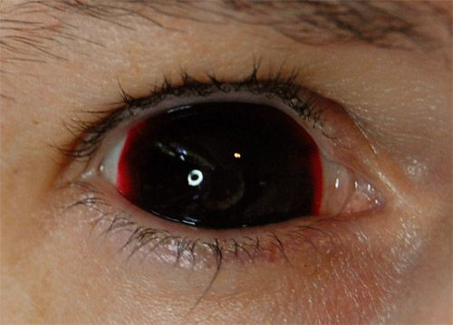 Pin On Scary Demon Contacts