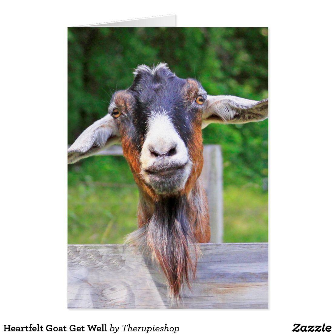 Heartfelt Goat Get Well Card