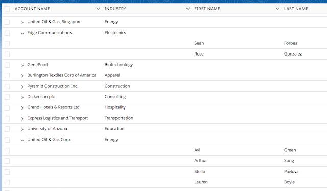 lightning:treegrid example in Salesforce - Sample Code