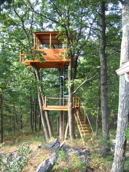 Steel Spiral Staircases Interior Steel Spiral Stairs Backyard Trees Tree House Designs Tree House