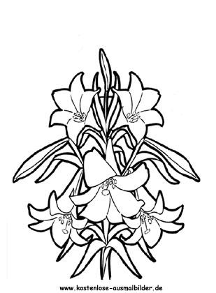 Ausmalbild Bunte Osterblumen Zum Ausdrucken Ostern Blumen Malvorlagen Ostern Malvorlagen Blumen