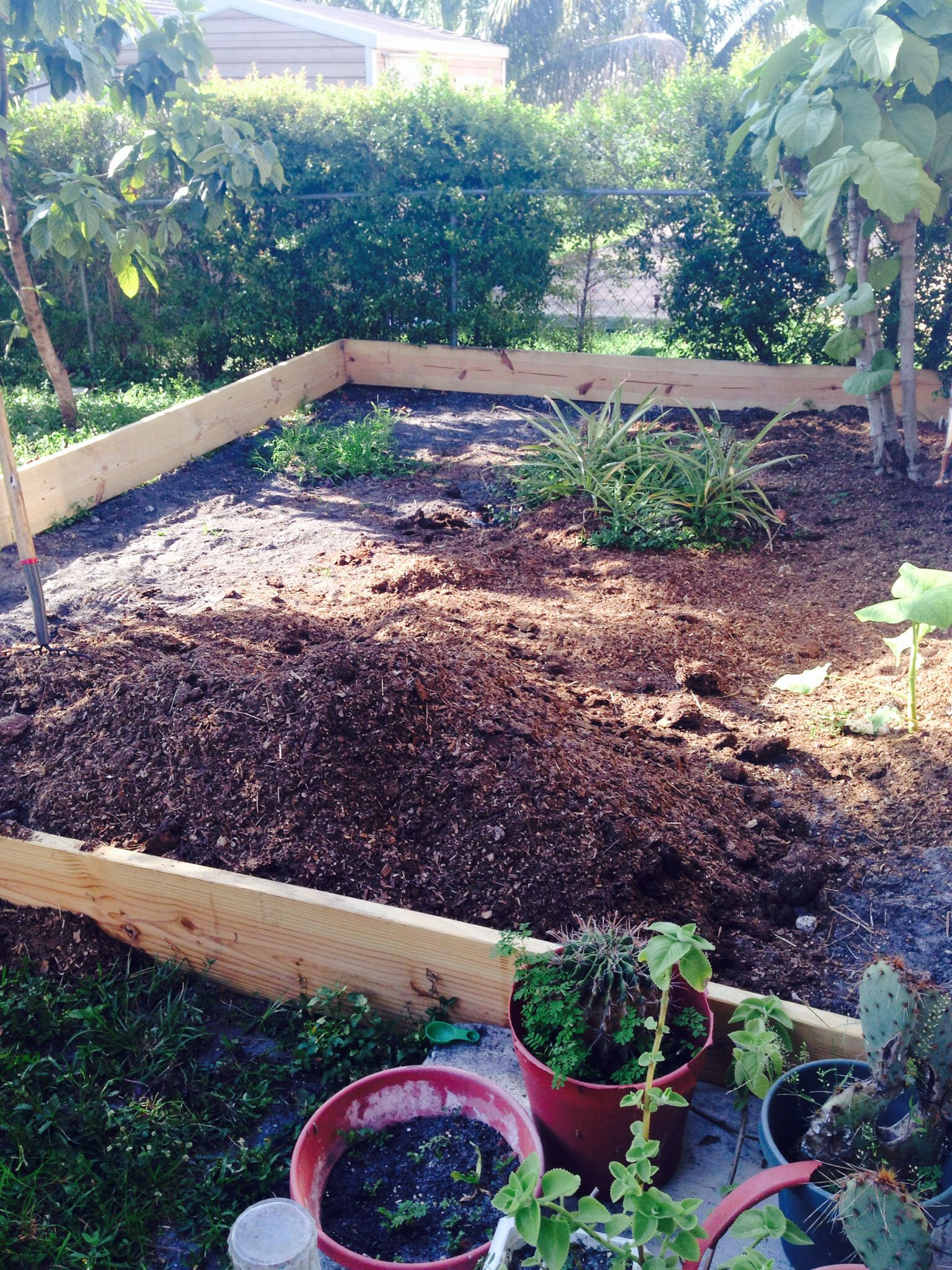 This is a raised bed waiting to lay down my beautiful organic garden