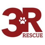 3r Rescue Inc Losing A Dog Shelter Animal Control