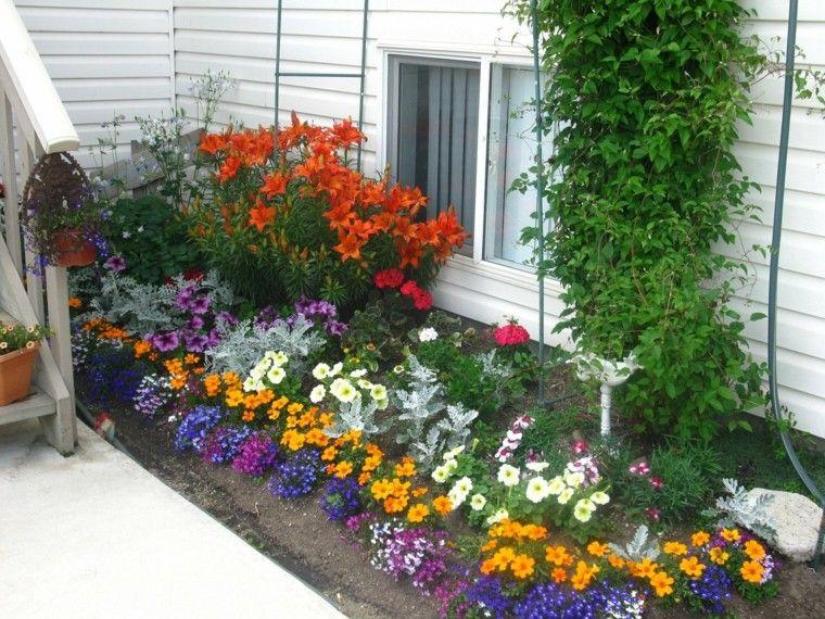Flores para plantar en un jard n peque o jard nes y for Jardin que planter en janvier