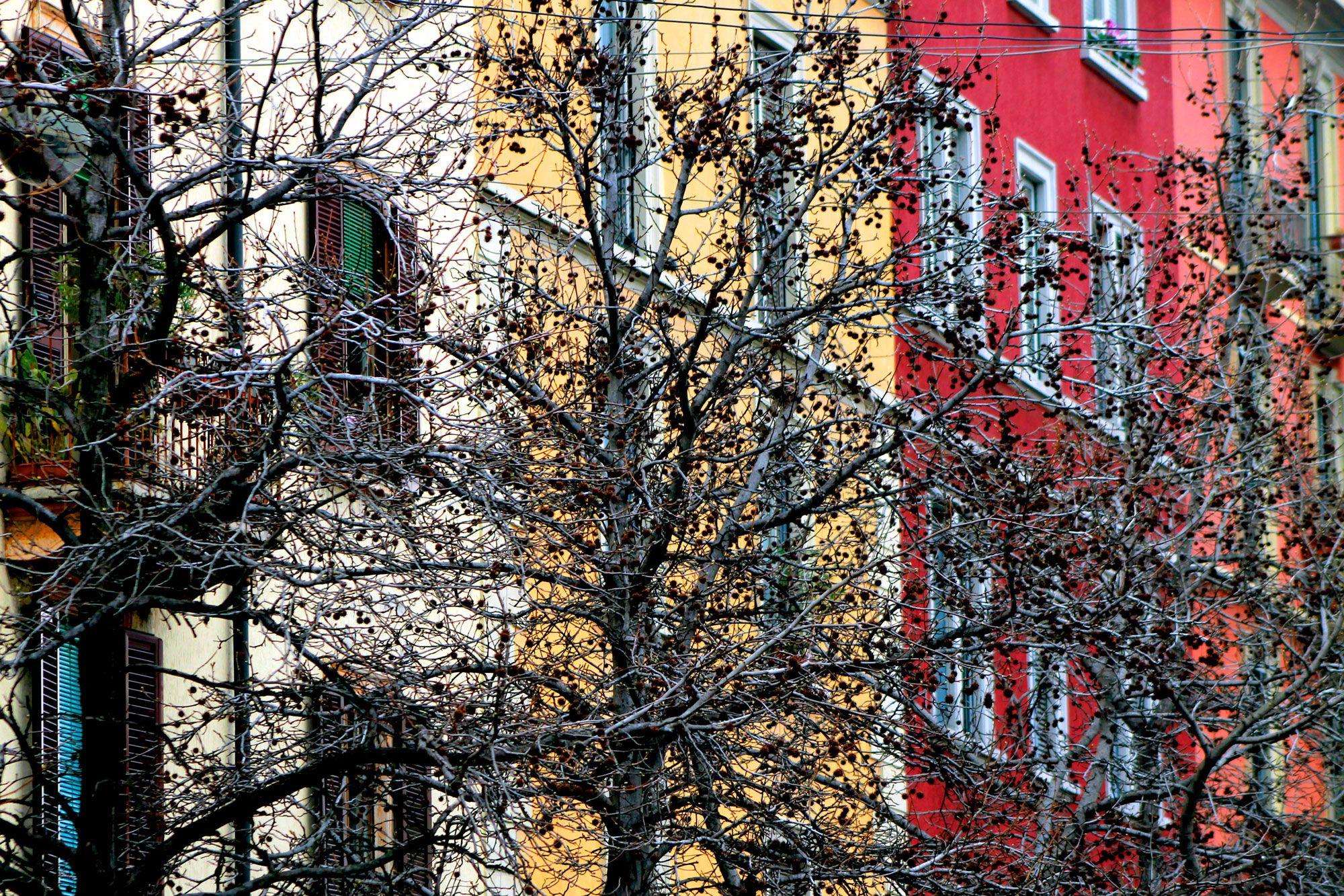 Avete una giornata o almeno una mezza giornata tutta per voi? Avete voglia di passeggiare un po' in un quartiere della vostra città così particolare da farvi dimenticare di essere a Milano?