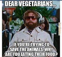 funny-memes-jokes-pictures-haha-lol-via-OhSoHumorous.com 04674