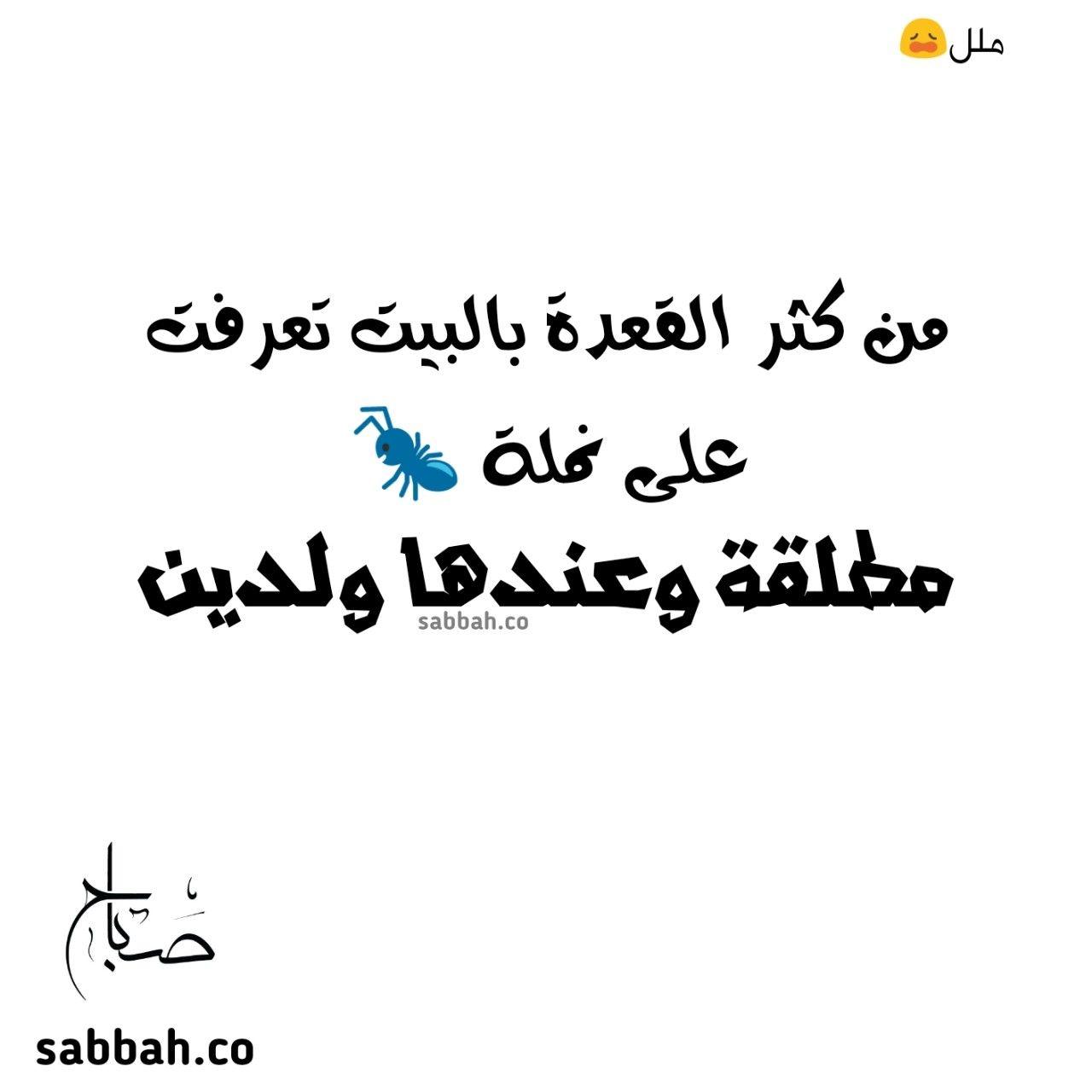 من كتر القعدة بالبيت تعرفت على نملة مطلقة وعندها ولدين Arabic Calligraphy Calligraphy