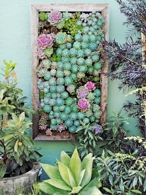 GroVert Living Wall Panel Skinny U2013 Urban Zeal Planters