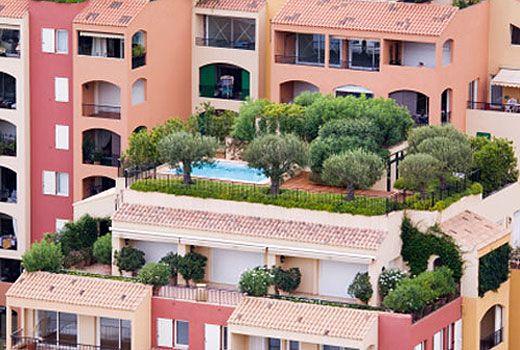 terrazzo verde520 Piante e fiori, usiamoli come alleati anti caldo ...