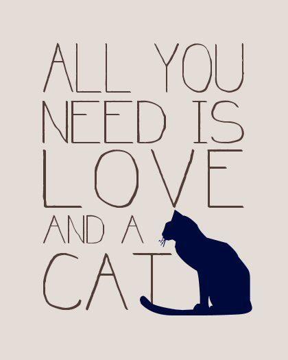 Kittycatty...