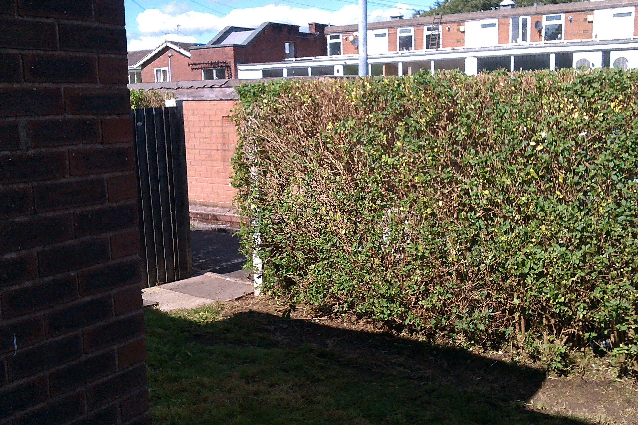 Void garden after on Longridge Knutsford by Scott Maude's ...