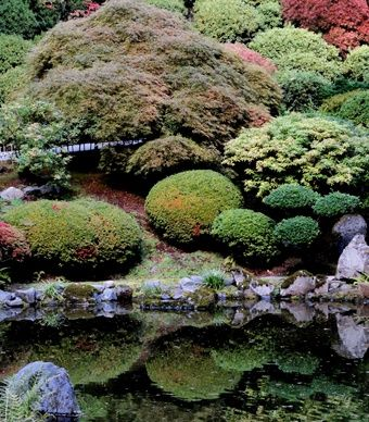 """Taken this fall at the Japanese Garden in Portland, Ore.—a photographer's paradise!""  // Great Gardens & Ideas //"