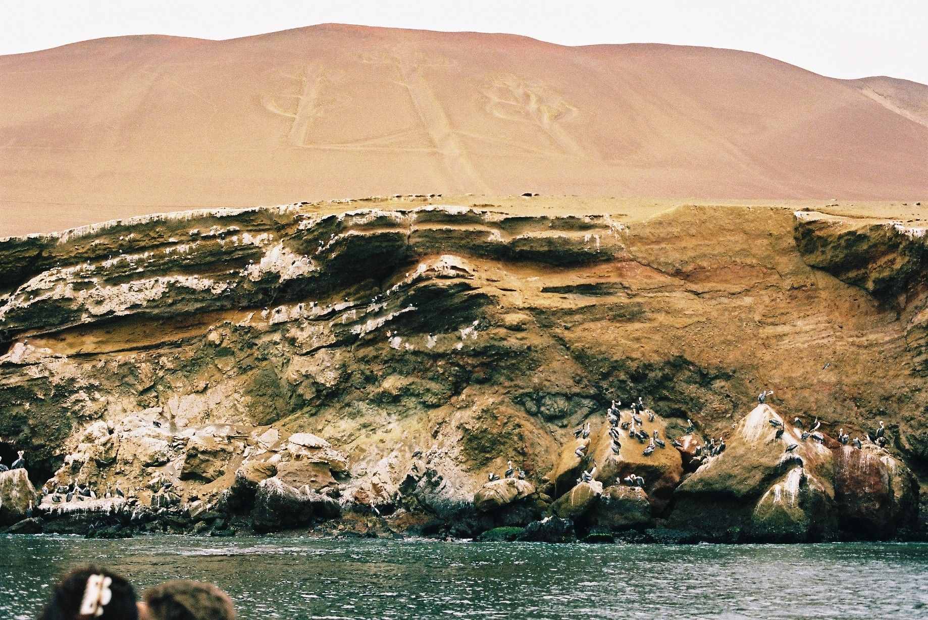 Candelabra Of The Andes Or Paracas Candelabra By Alice
