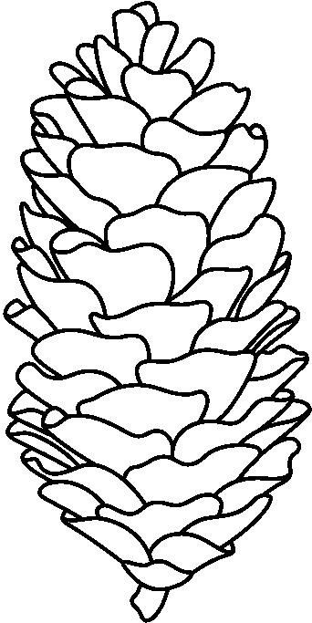 Pinecone pattern--- color every leafy thing a different