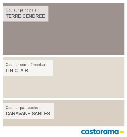 Castorama Nuancier Peinture - Mon harmonie Peinture TERRE CENDREE - peinture satin ou mat