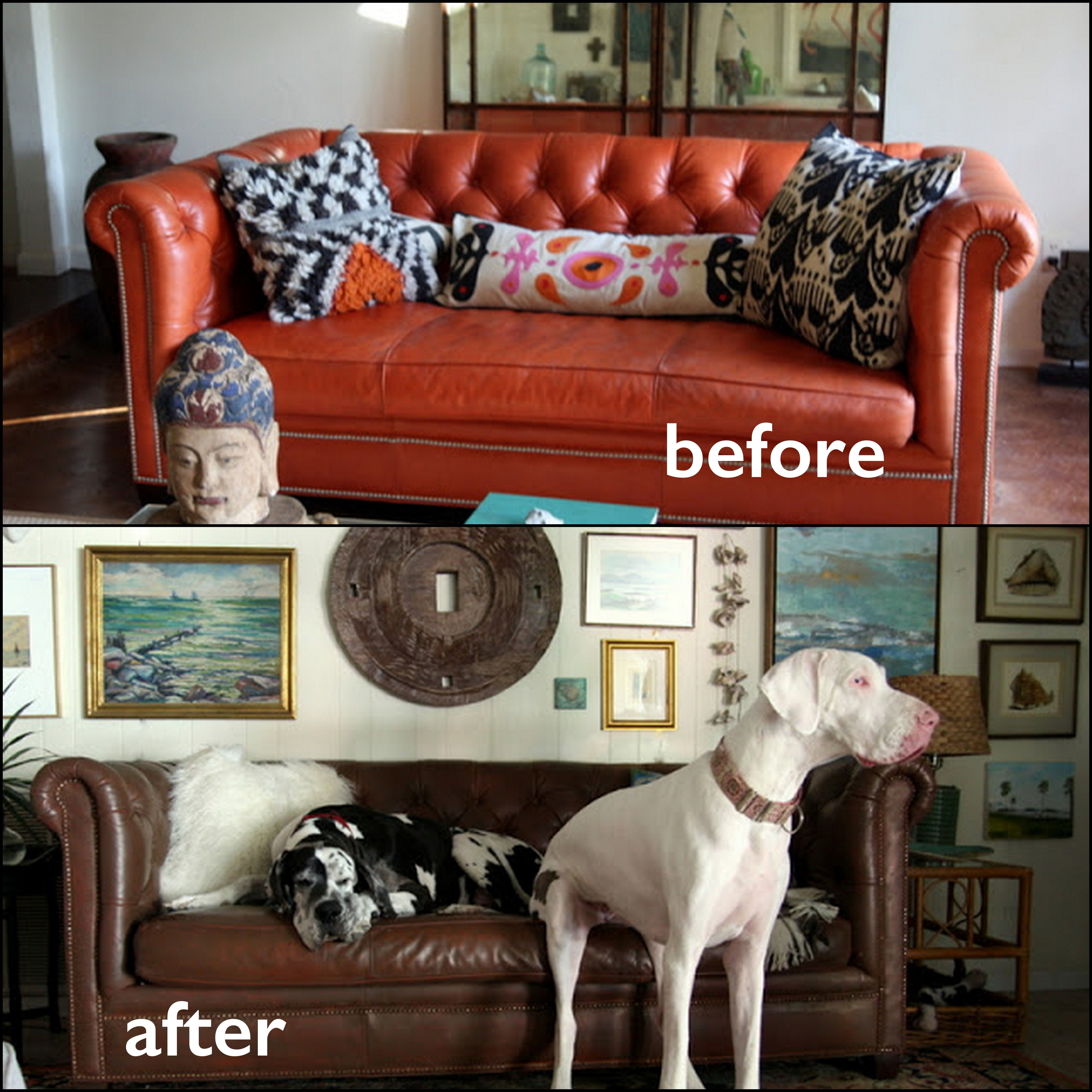 Our Walnut Leather Dye Transforms This Chesterfield Sofa Sofa Colors Leather Restoration Leather Sofa