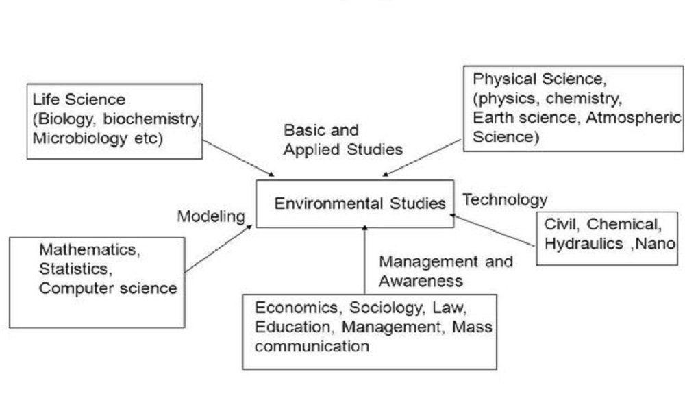 The Multidisciplinary Nature Of Environmental Studies