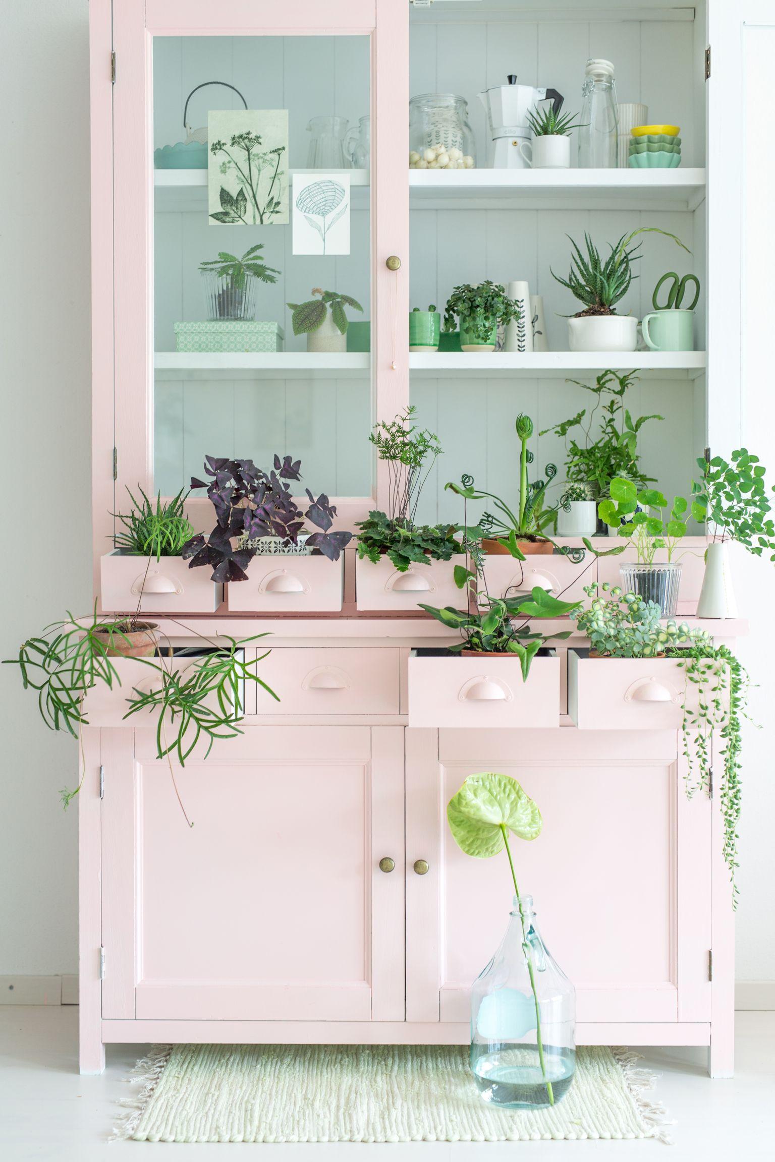 early dew flexa kast : My Little Urban Jungle Last Summer Home Sweet Home Pinterest