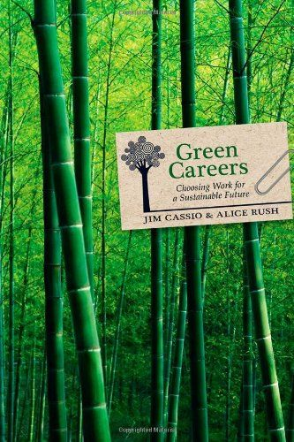 Green Careers: Choosing Work for a Sustainable Future by Jim Cassio http://www.amazon.com/dp/0865716439/ref=cm_sw_r_pi_dp_XNWkub1D7SZ7S