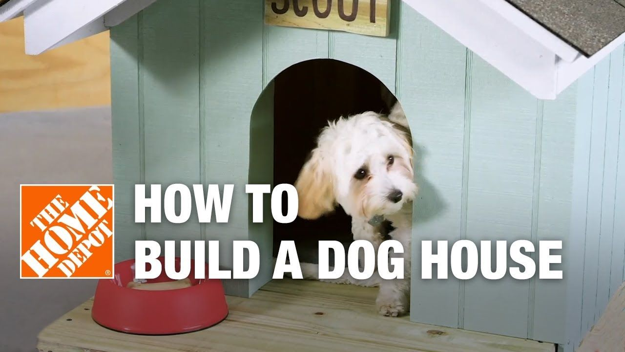 Learn How To Make A Dog House For Your Pet This Diy Dog House Is A Safe Place For Pets To Take Shelter This Tutorial Wi Dog House Diy Diy Dog