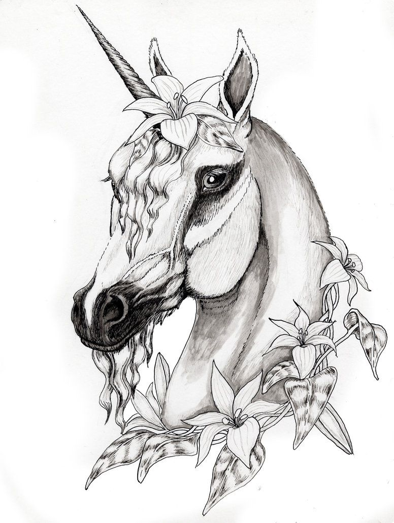 Unicorn Fantasy Myth Mythical Mystical Legend Coloring Pages