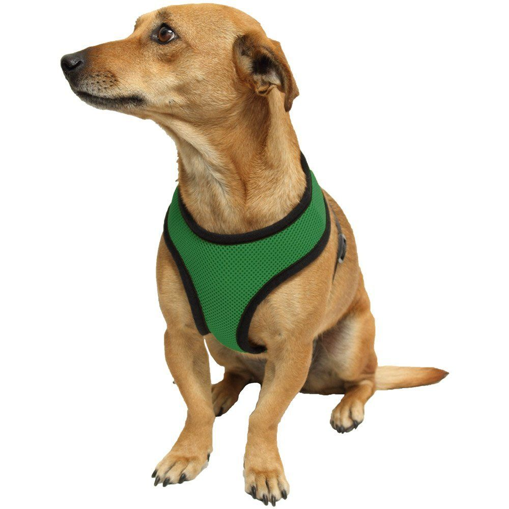 Kavsy™ Best Soft Mesh Pet / Dog Safety Harness to Walk Your Dog on the Go, Can Be Attached to Car Safety Belt / Seatbelt for Restraint