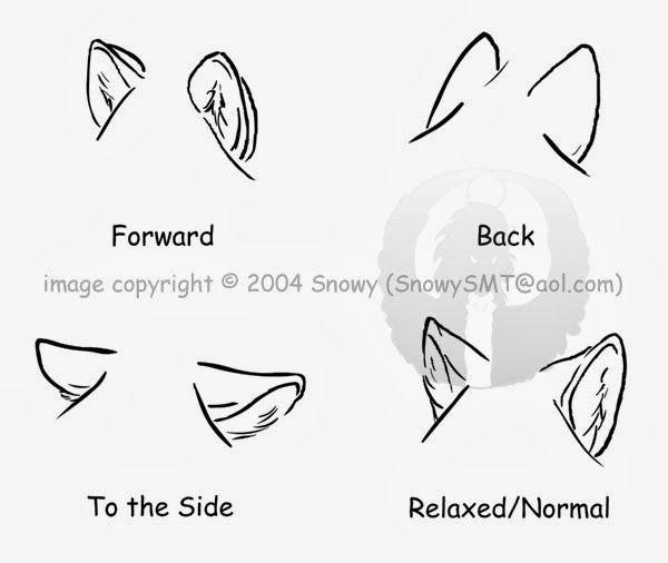 Tutorial Lobos Orelhas Desenho Desenhos Desenhos Aleatorios