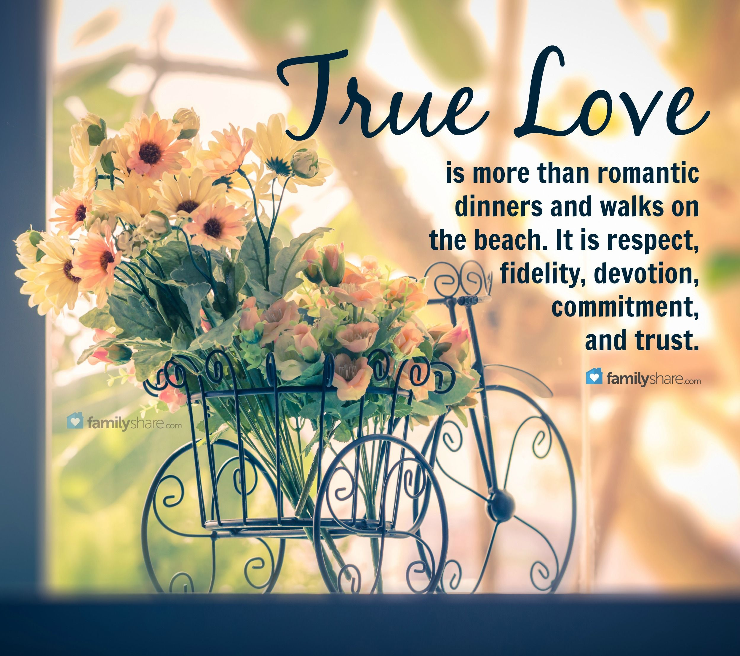 True Love Is More Than Romantic Dinners And Walks On The