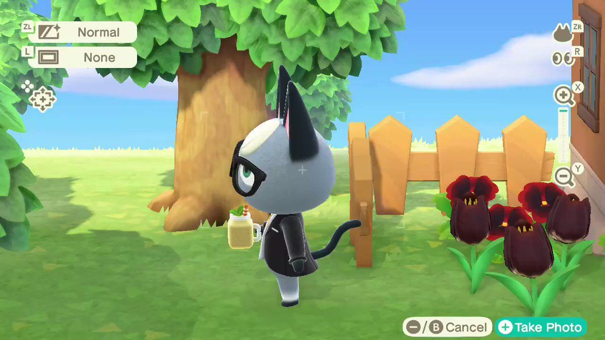 How To Get Animal Crossing Pocket Camp On Kindle Fire
