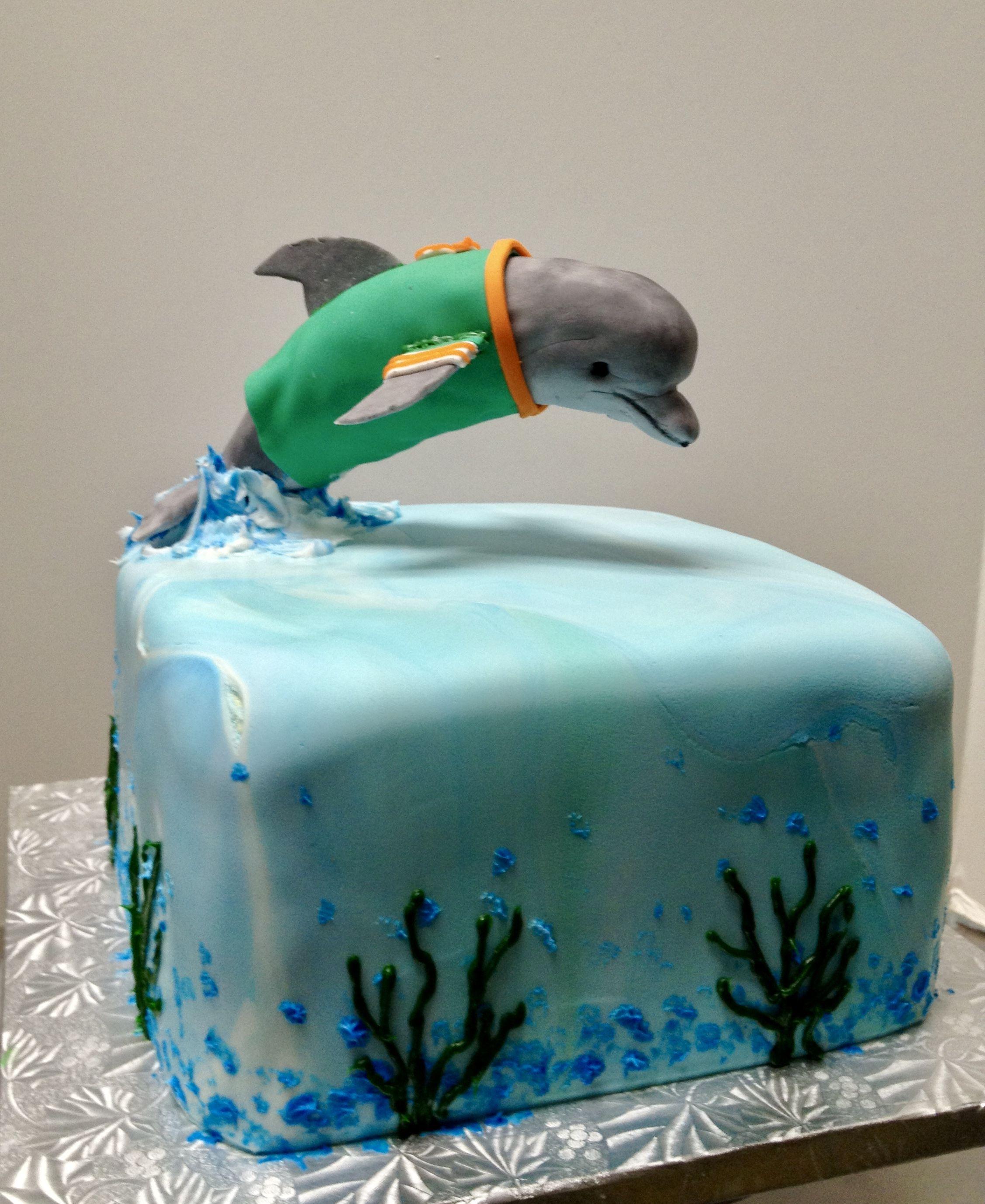 Miami dolphin grooms cake cake dishes miami dolphins