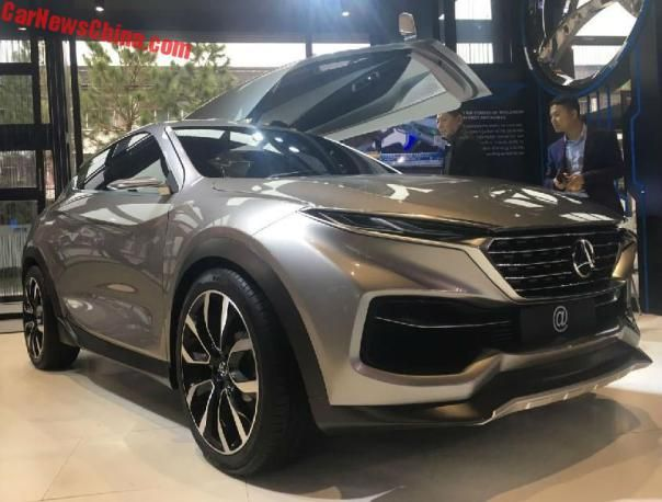 Hozon Auto Is Another New Ev Brand From China