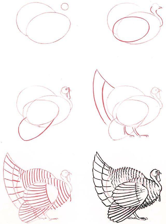 2014-09) ... en kalkun   Arte   Pinterest   Dibujar, Dibujo y ...