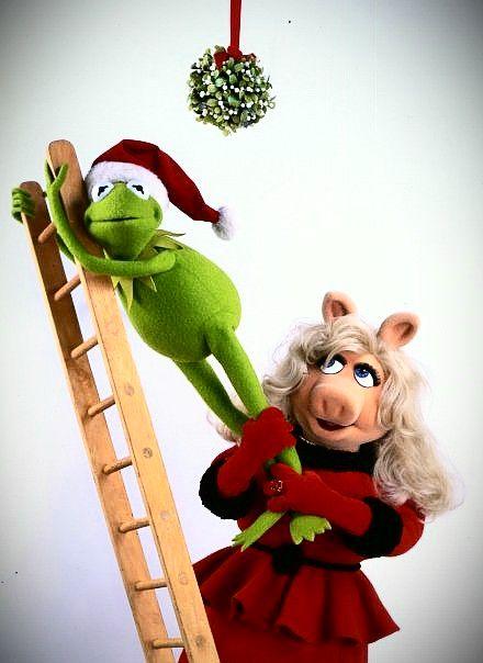 Weihnachtsbilder Pinterest.Pin By Marcia Neisler On Kermit The Frog Pinterest Kermit