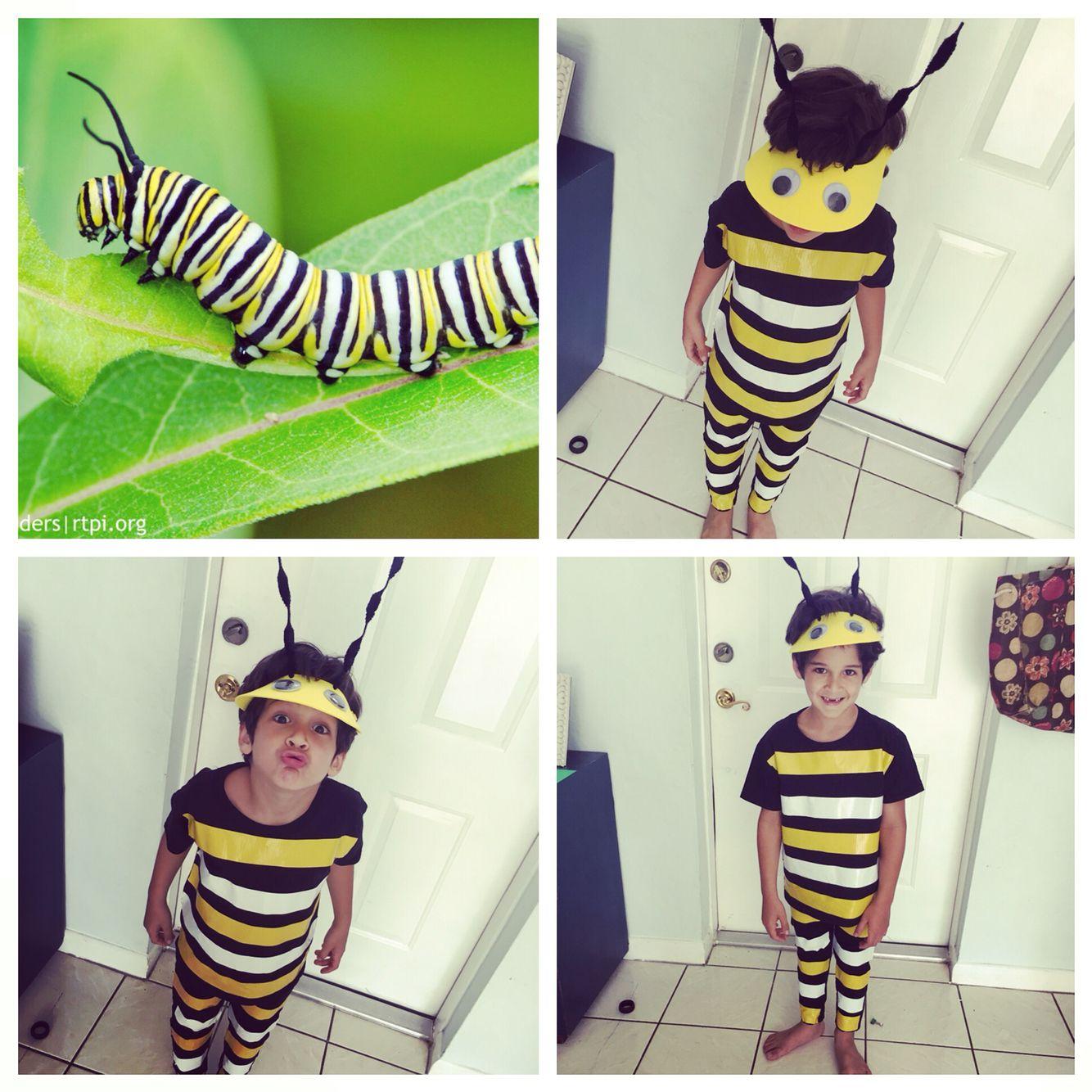 Child Animal Dress Up Kit Caterpillar Bee Ladybird Fancy Dress Book Week Costume