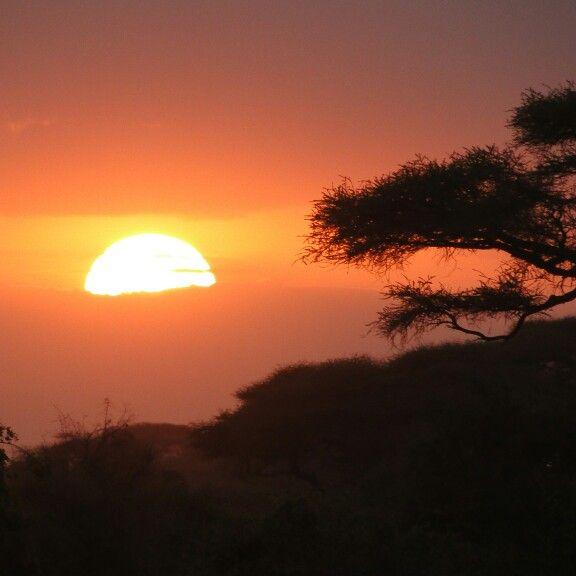 #voyage #picoftheday #travel #photo #africa #nature #paysage #safari #animaux #sunset #savane #sun #amboseli #reserve