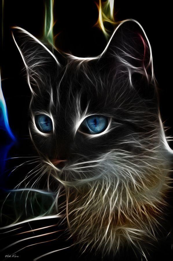 krásna čierna mačička fuckedzadarmo porno zadarmo čierne porno