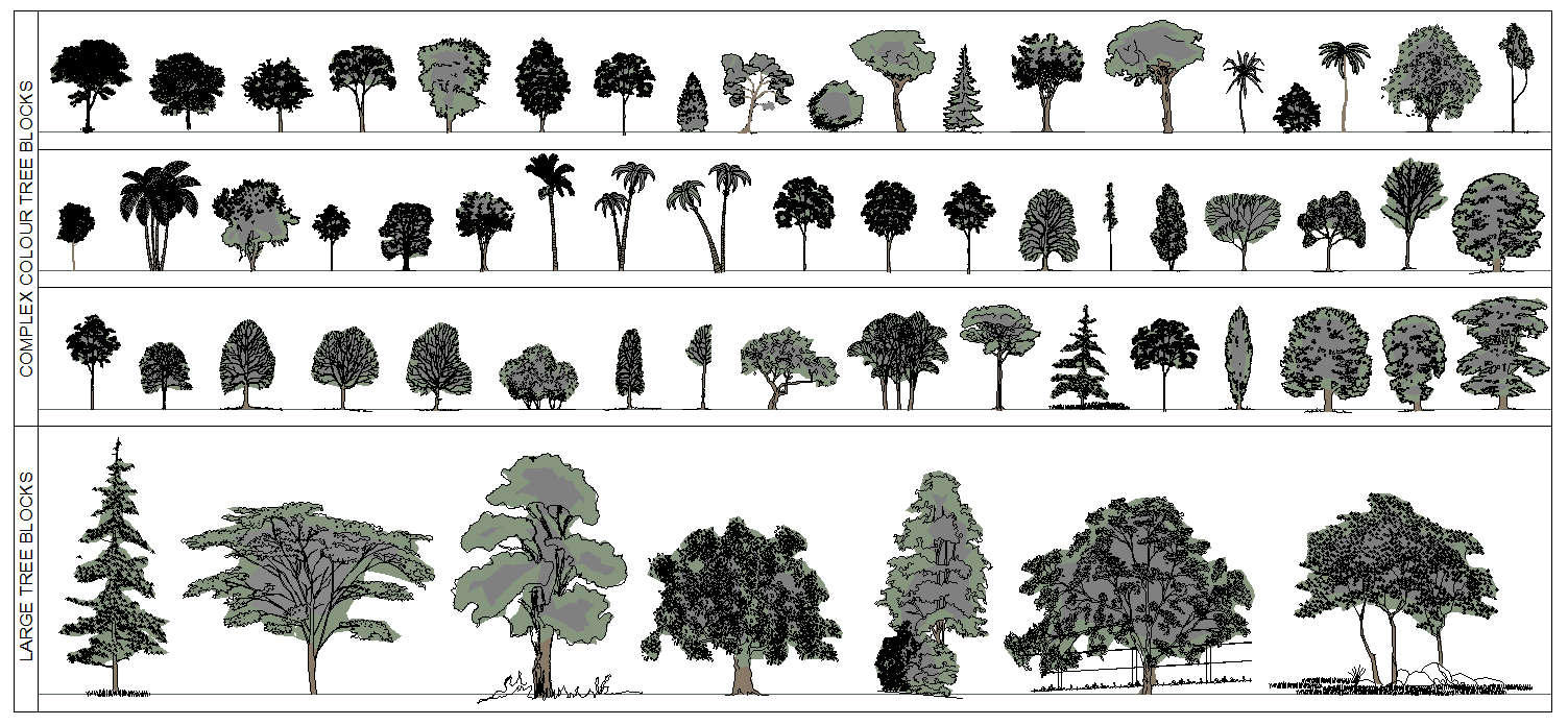 architecture drawings - Architecture Drawing Of Trees