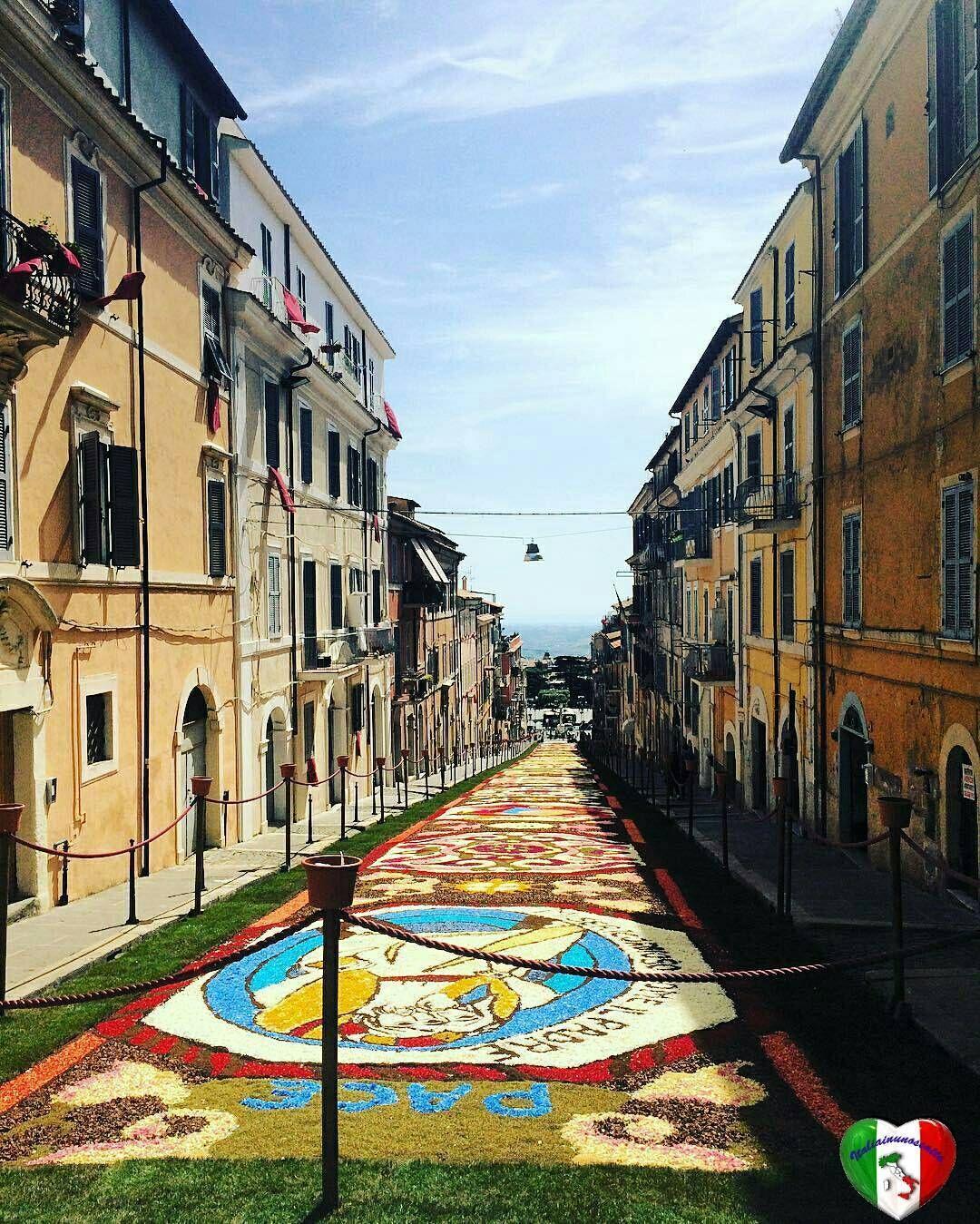 29 Maggio 2016   Foto di: @elisabetta8900   Luogo: Infiorata Genzano di Roma  Vi invitiamo a visitare la sua bellissima gallery Foto selezionata da Admin: @antoninoprinciotta   SEGUI  @italiainunoscatto  TAGGA #italiainunoscatto #italia_inunoscatto   Founser/Admin: @antoninoprinciotta   Altre nostre gallery:  @italiainunoscatto_bnw / #italiainunoscatto_bnw  @italiainunoscatto_splash / #italiainunoscatto_splash  @italiainunoscatto_hdr / #italiainunoscatto_hdr  #italiainunoscatto_hdr_sunset…
