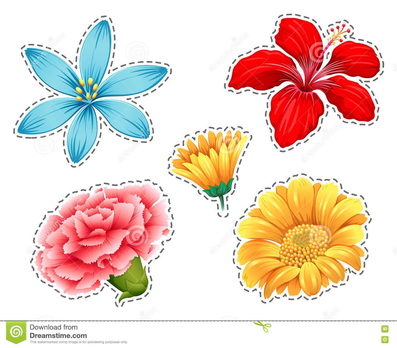 types of flowers types of flowers az common types of