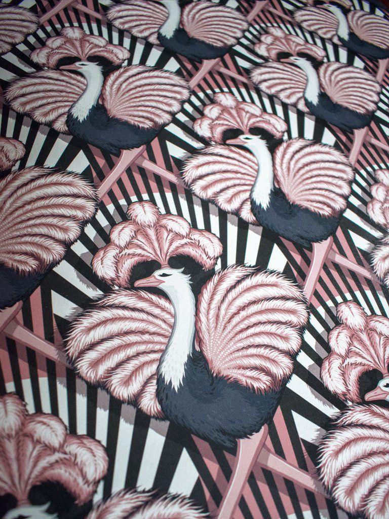 Zsa Zsa in 2019 Candy stripe wallpaper, Striped
