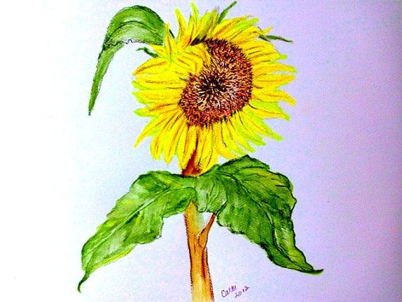 Sun Flower by cathib9 on Etsy, $25.00