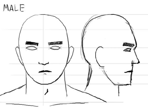 Portrait Drawing Tutorial How To Draw Male And Female Faces Nose Drawing Cartoon Man Cartoon Drawings