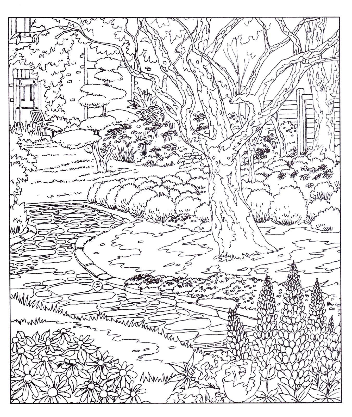 Country Gardens Adult Colouring Book Doodle Design New Mindfulness P B 2
