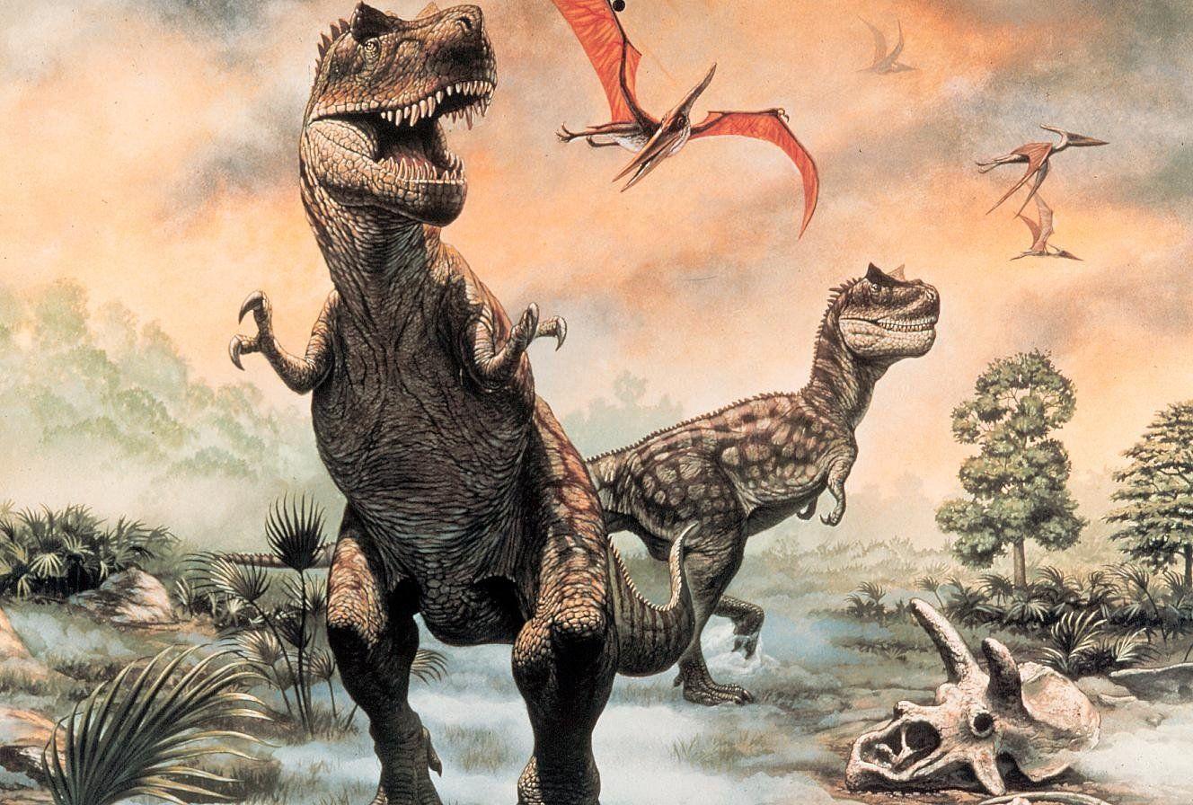 Download Dinosaur Wallpaper Hd Dinosaurs Pictures And Facts Dinosaur Illustration Dinosaur Wallpaper Dinosaur Pictures