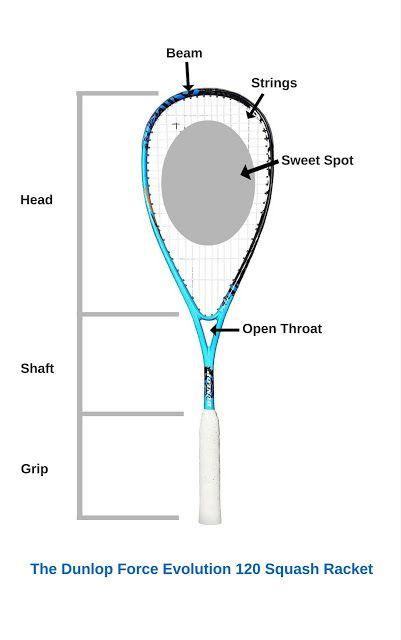 Phenomenal Squash Ballerz Com Squash Racket Guide Squash Squashracket Wiring Database Cominyuccorg