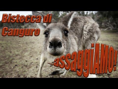 #assaggiAMO #bistecca #canguro #kangaroo #steak #meat #carne #australia #unannoinaustralia #eat #tasting