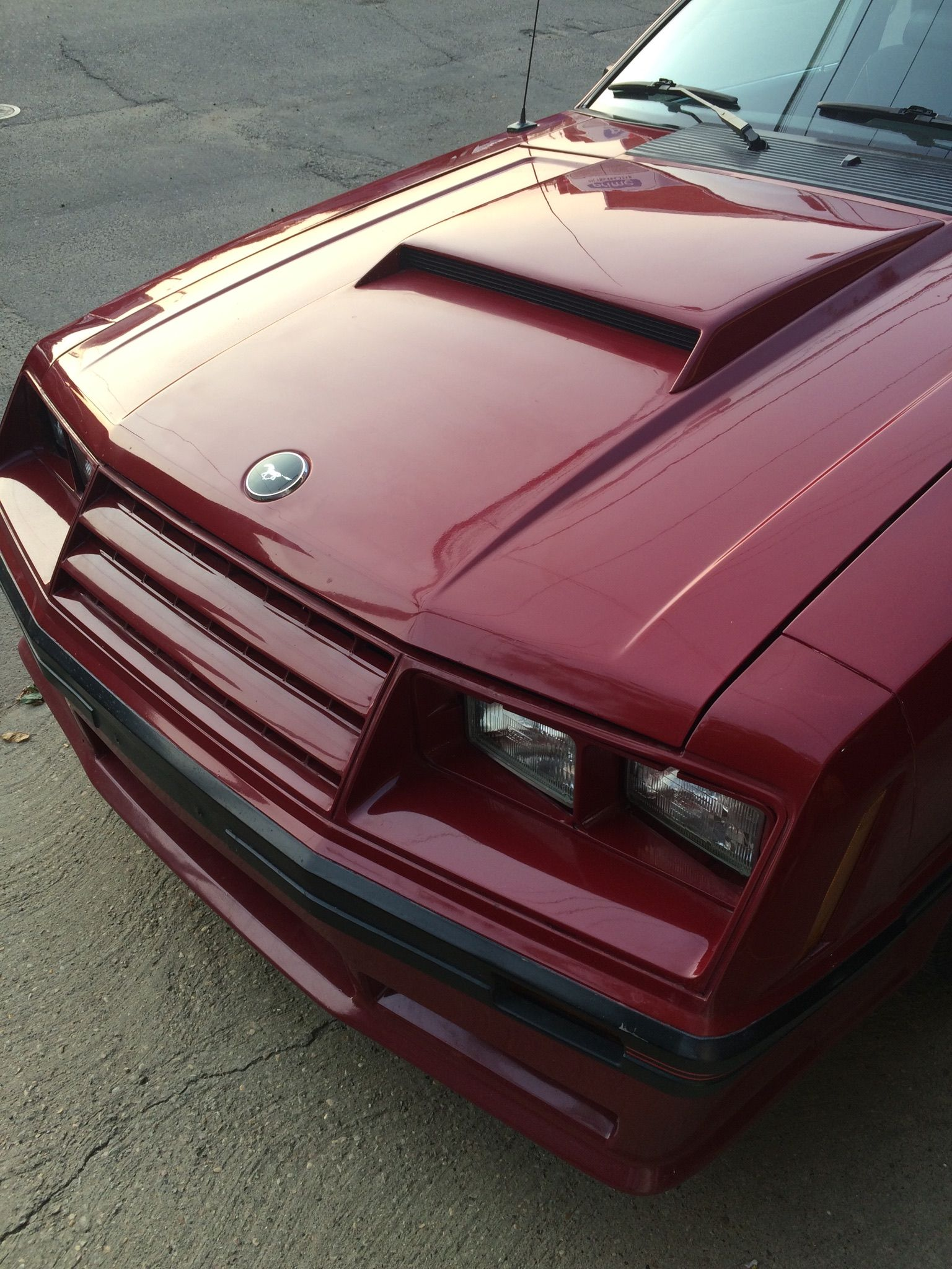 ford mustang gt 1979