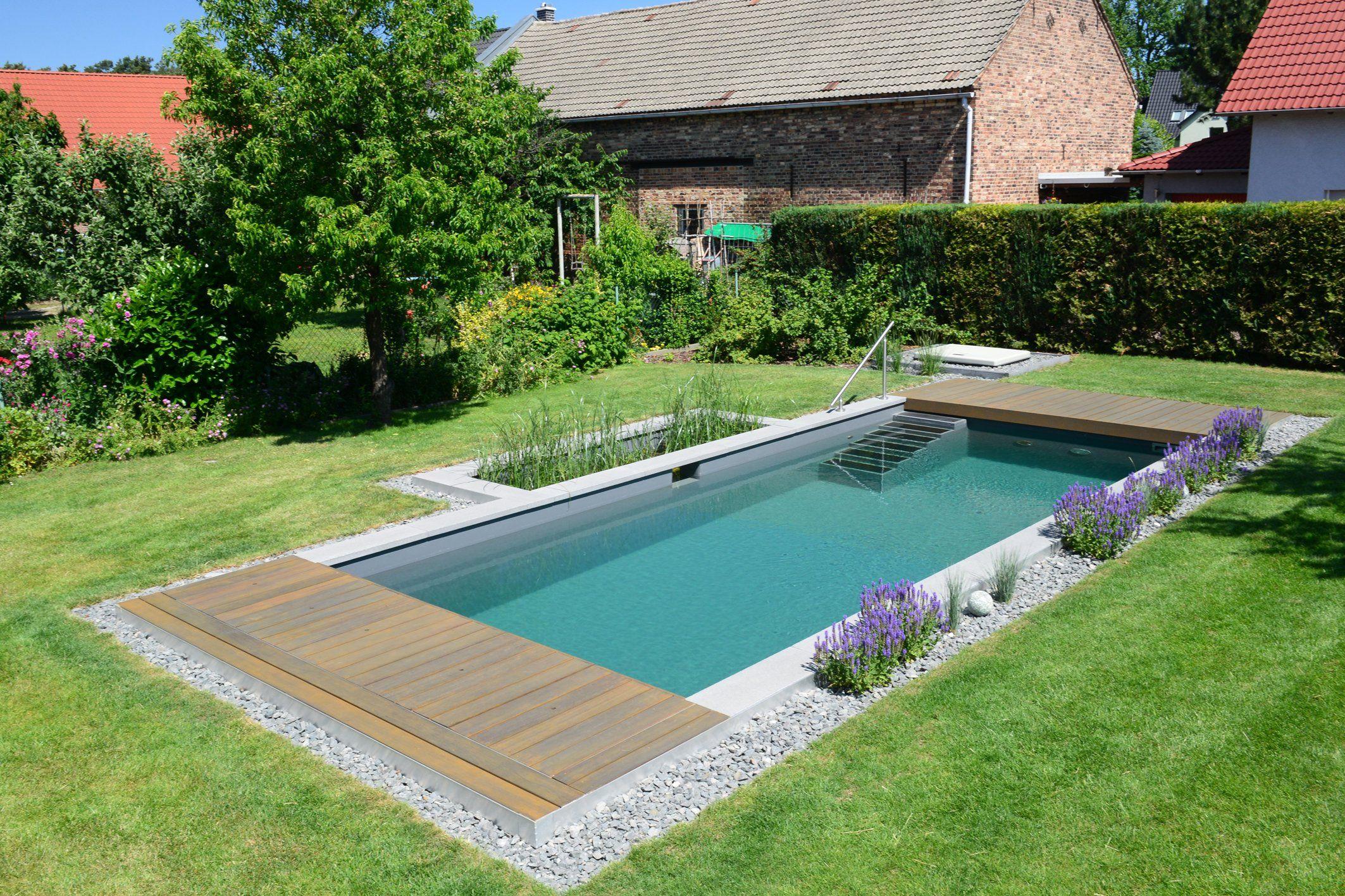 Naturpool im Garten Besser spät als nie   schwimmbad.de ...